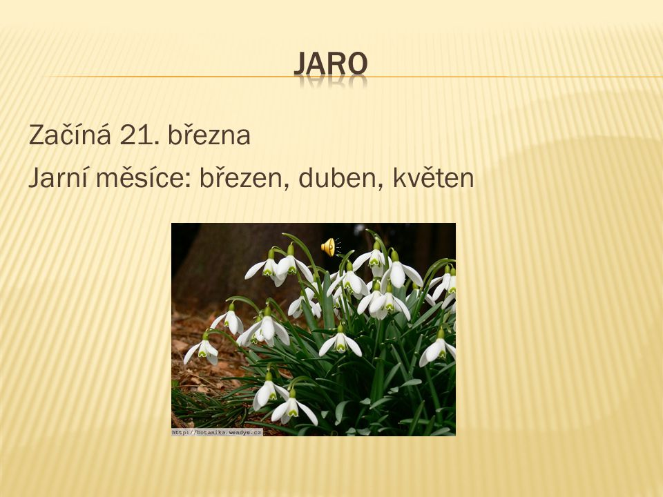 JARO Začíná 21. března Jarní měsíce: březen, duben, květen