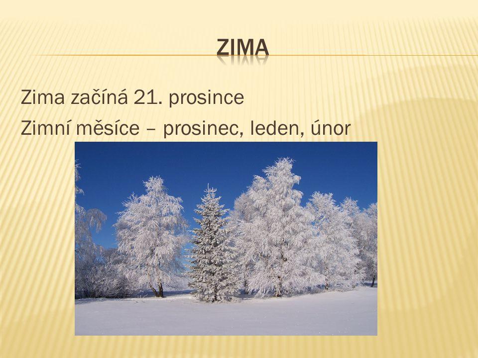 zima Zima začíná 21. prosince Zimní měsíce – prosinec, leden, únor