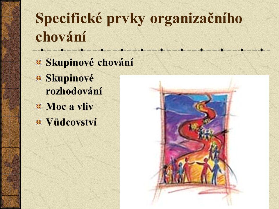 Specifické prvky organizačního chování