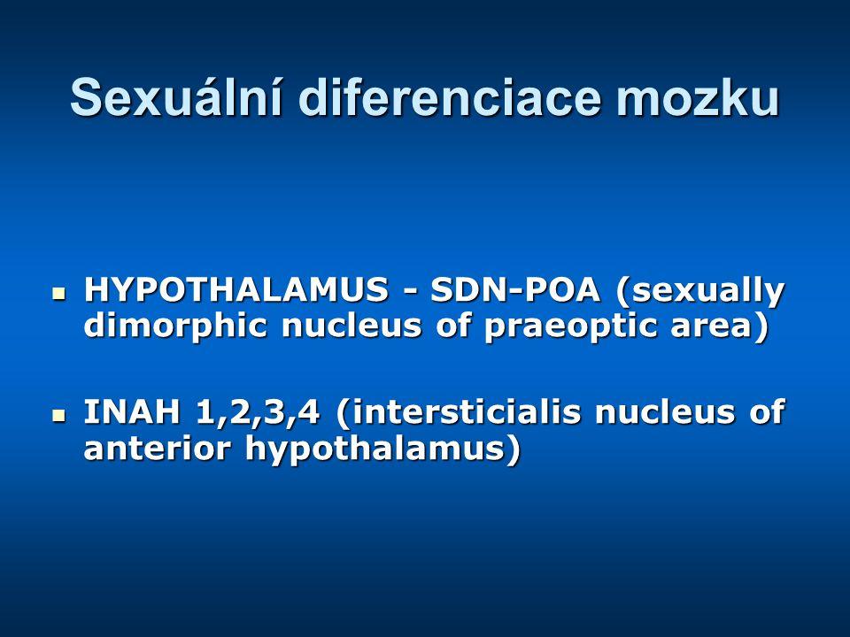 Sexuální diferenciace mozku
