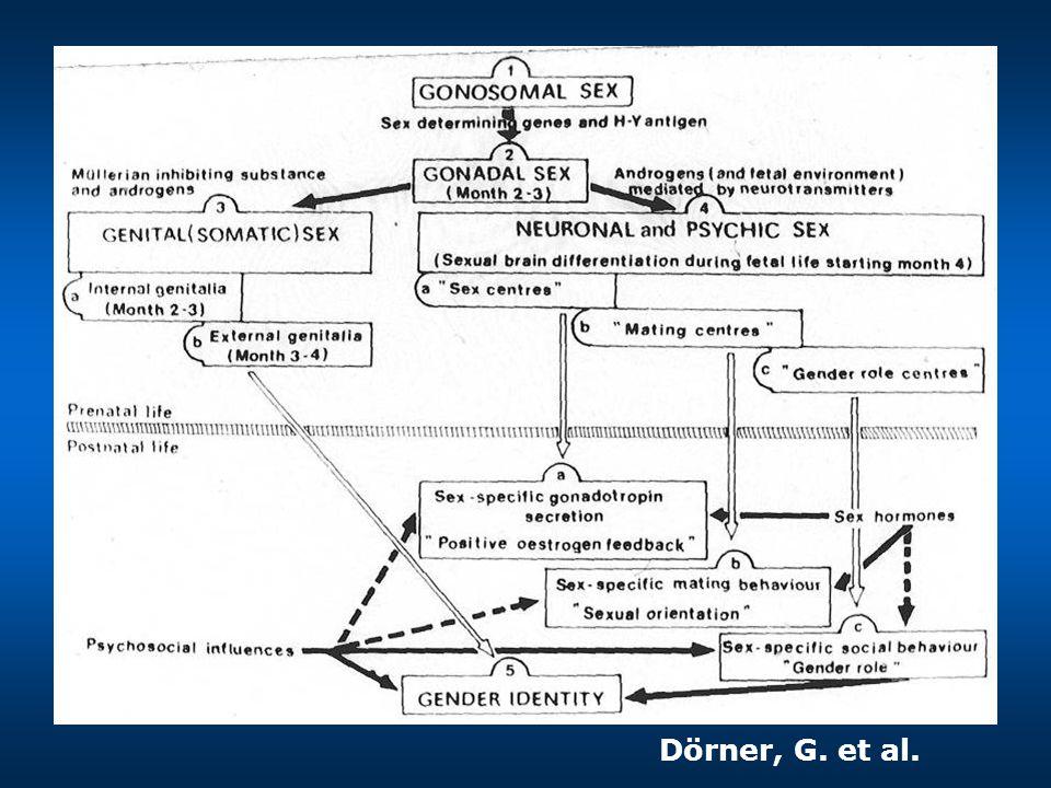 Dörner, G. et al.