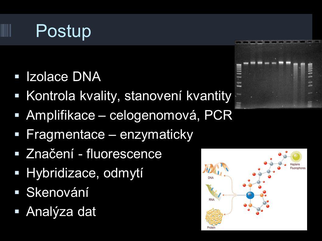 Postup Izolace DNA Kontrola kvality, stanovení kvantity