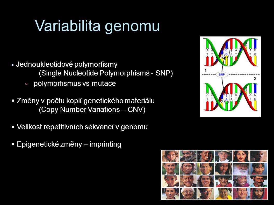 Variabilita genomu (Single Nucleotide Polymorphisms - SNP)