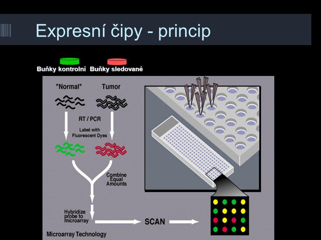 Expresní čipy - princip