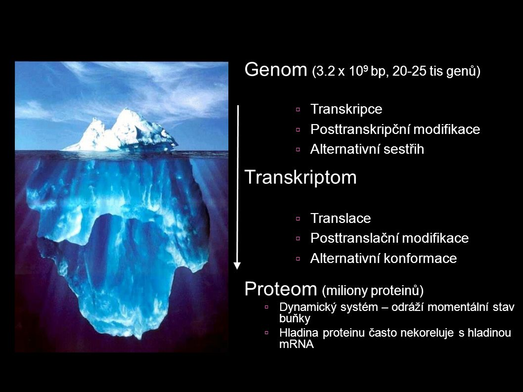 Proteom (miliony proteinů)