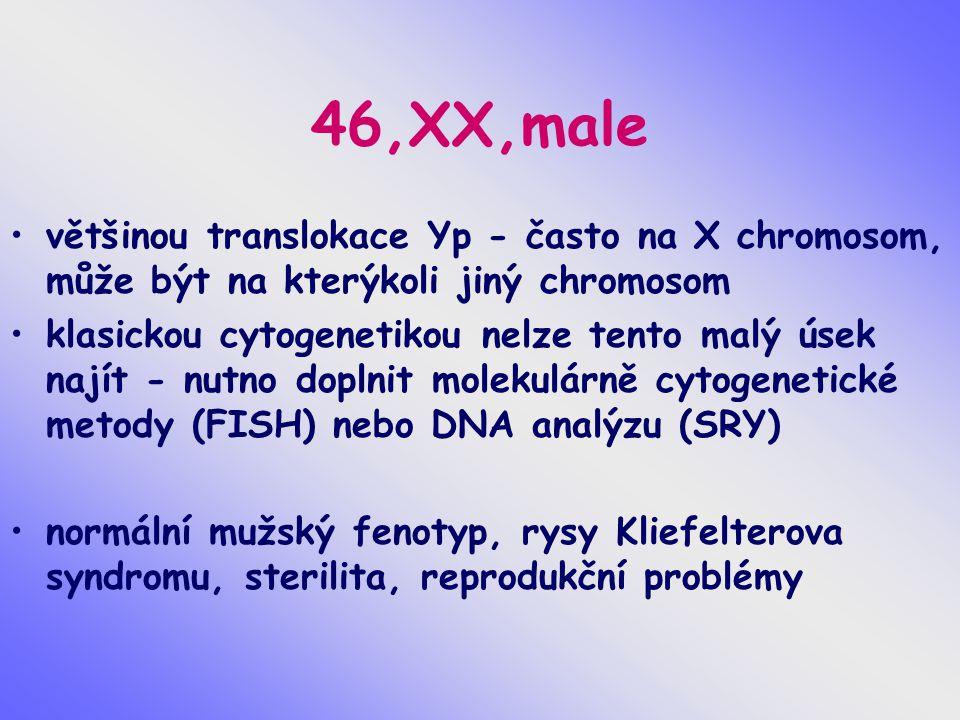 46,XX,male většinou translokace Yp - často na X chromosom, může být na kterýkoli jiný chromosom.