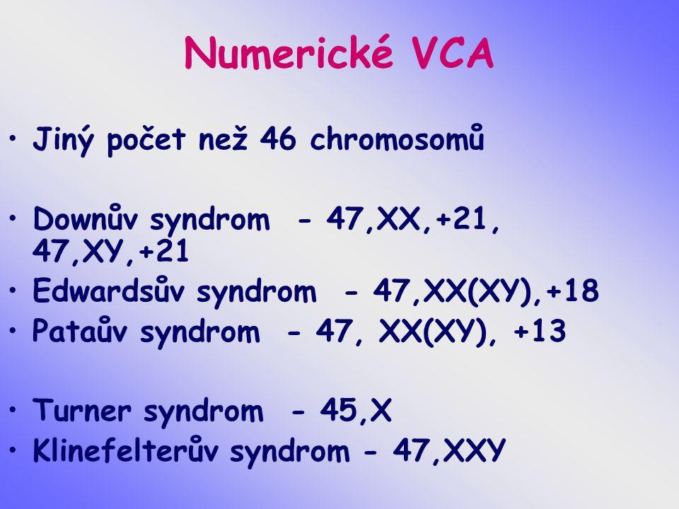 Numerické VCA Jiný počet než 46 chromosomů