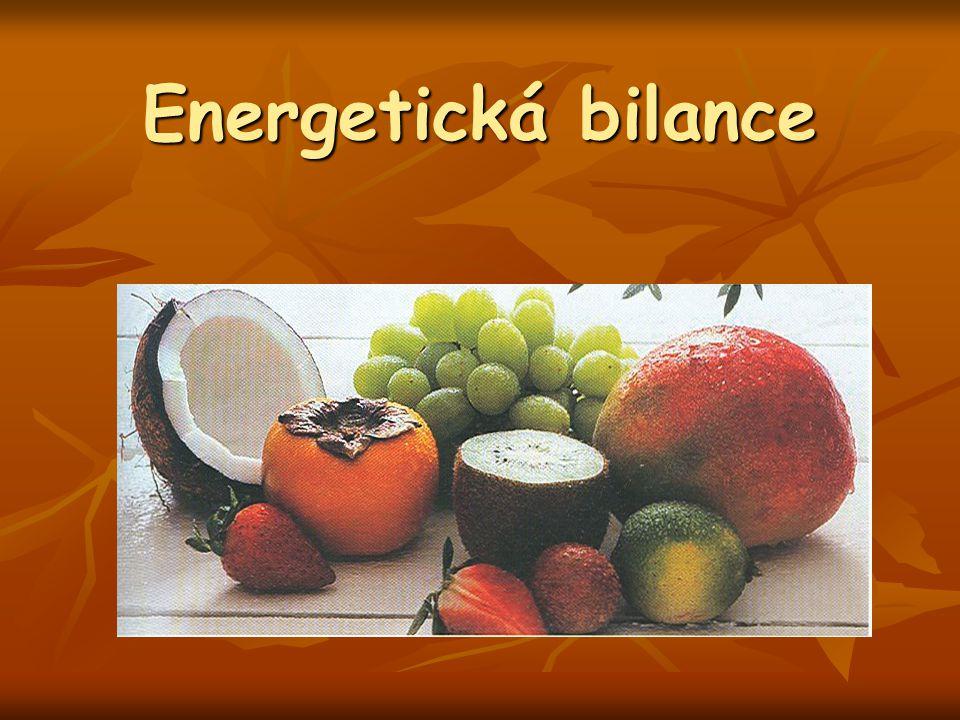 Energetická bilance