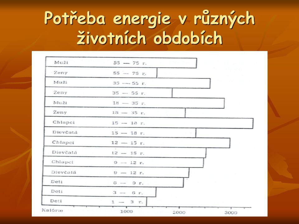Potřeba energie v různých životních obdobích