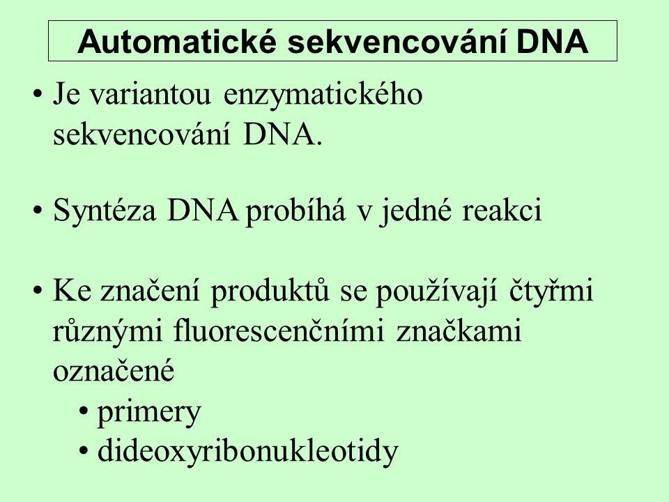 Automatické sekvencování DNA