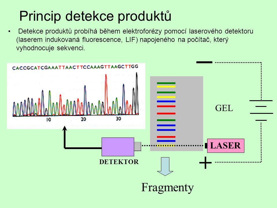 _ + Princip detekce produktů Fragmenty GEL LASER