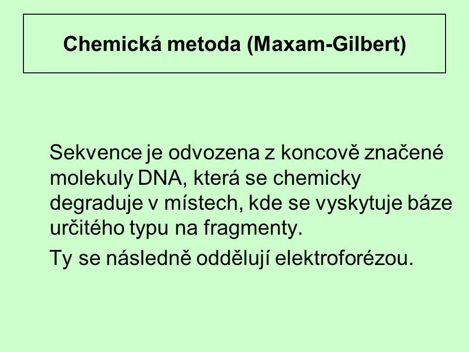Chemická metoda (Maxam-Gilbert)