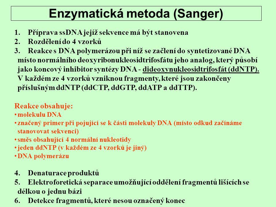 Enzymatická metoda (Sanger)