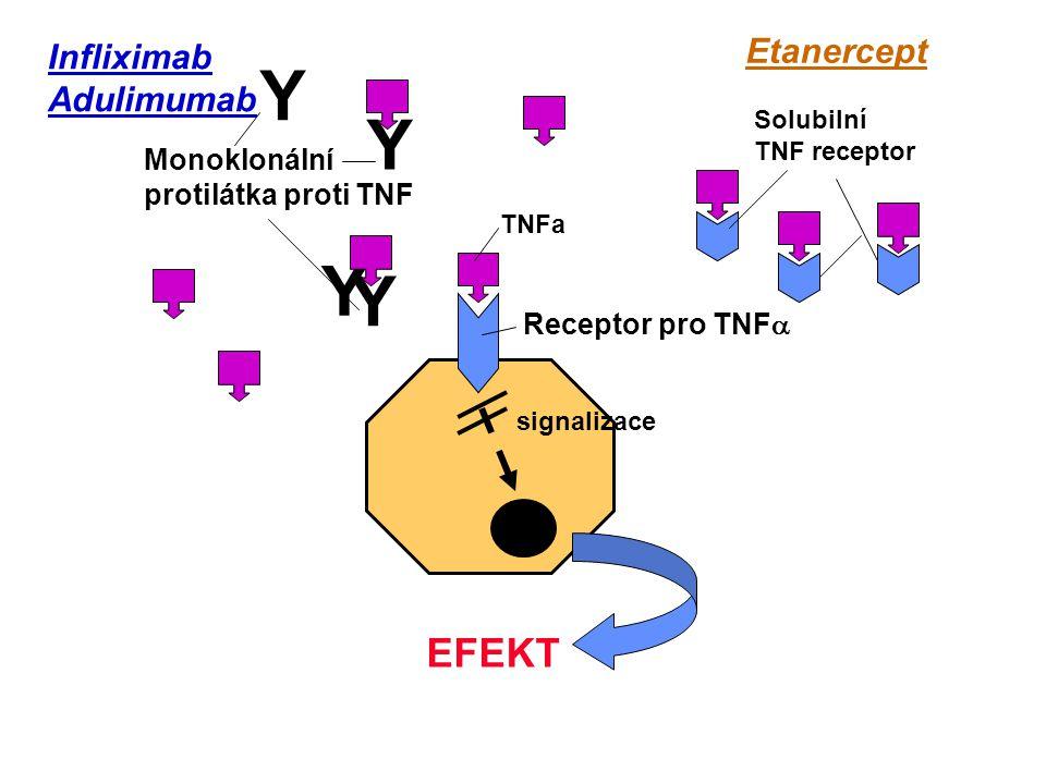 Y Y Y Y EFEKT Etanercept Infliximab Adulimumab Monoklonální