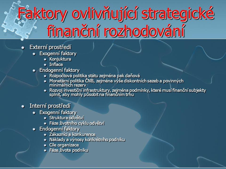 Faktory ovlivňující strategické finanční rozhodování