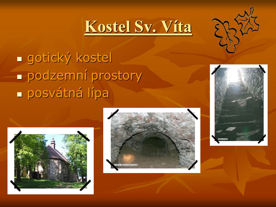 Kostel Sv. Víta gotický kostel podzemní prostory posvátná lípa