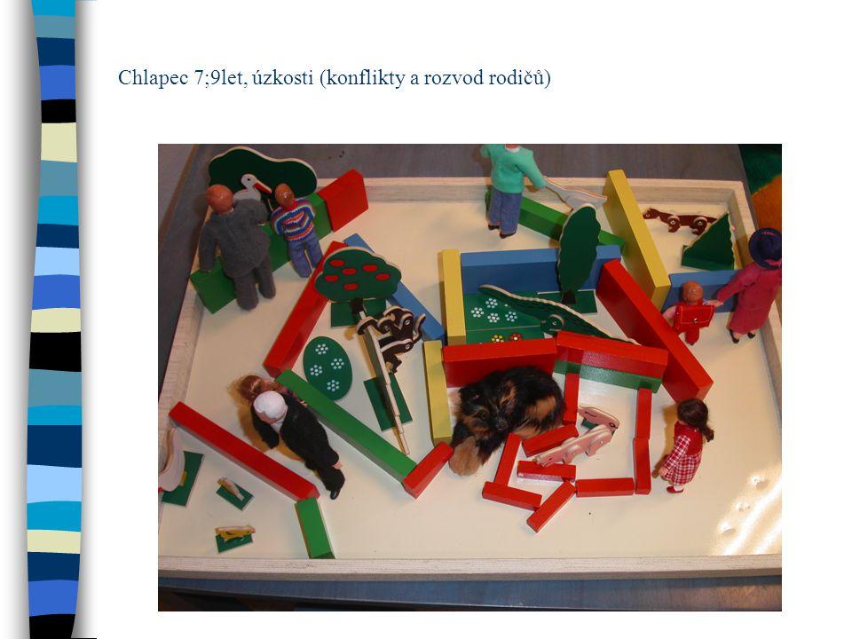Chlapec 7;9let, úzkosti (konflikty a rozvod rodičů)