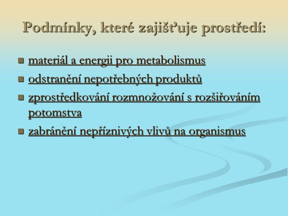 Podmínky, které zajišťuje prostředí: