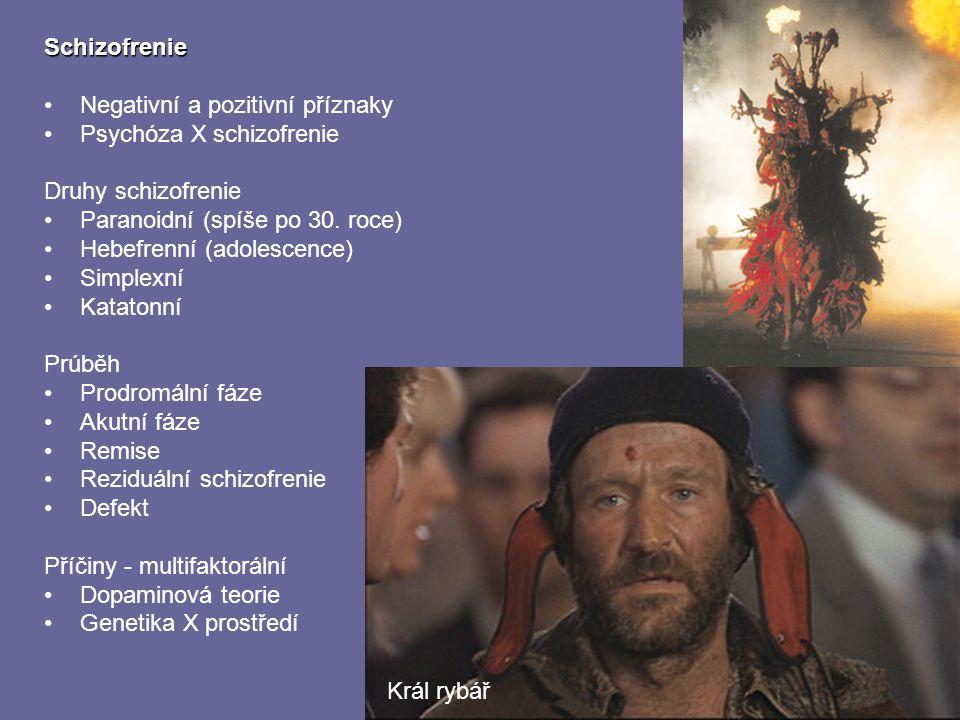 Schizofrenie Negativní a pozitivní příznaky. Psychóza X schizofrenie. Druhy schizofrenie. Paranoidní (spíše po 30. roce)