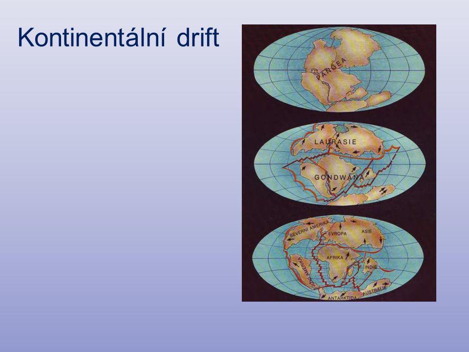 Kontinentální drift