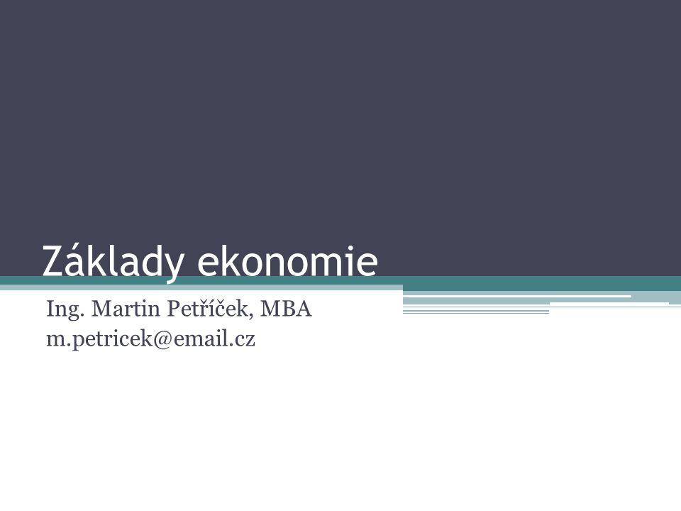 Ing. Martin Petříček, MBA m.petricek@email.cz