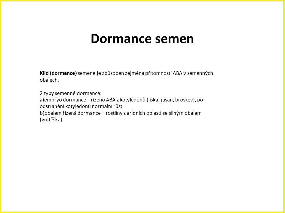 Dormance semen Klid (dormance) semene je způsoben zejména přítomností ABA v semenných obalech. 2 typy semenné dormance: