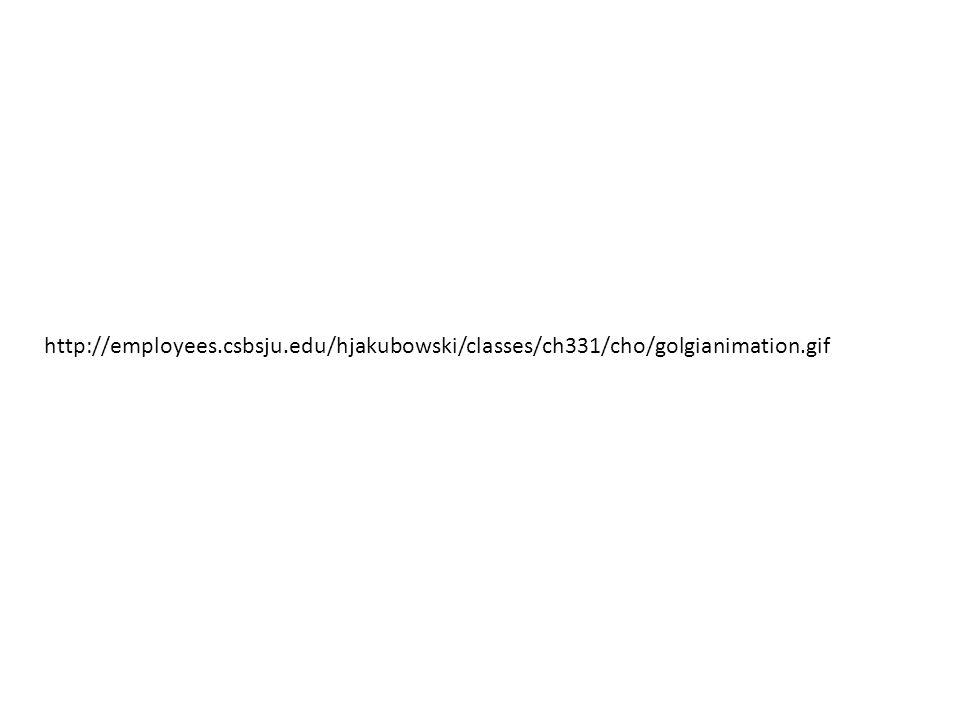 http://employees. csbsju