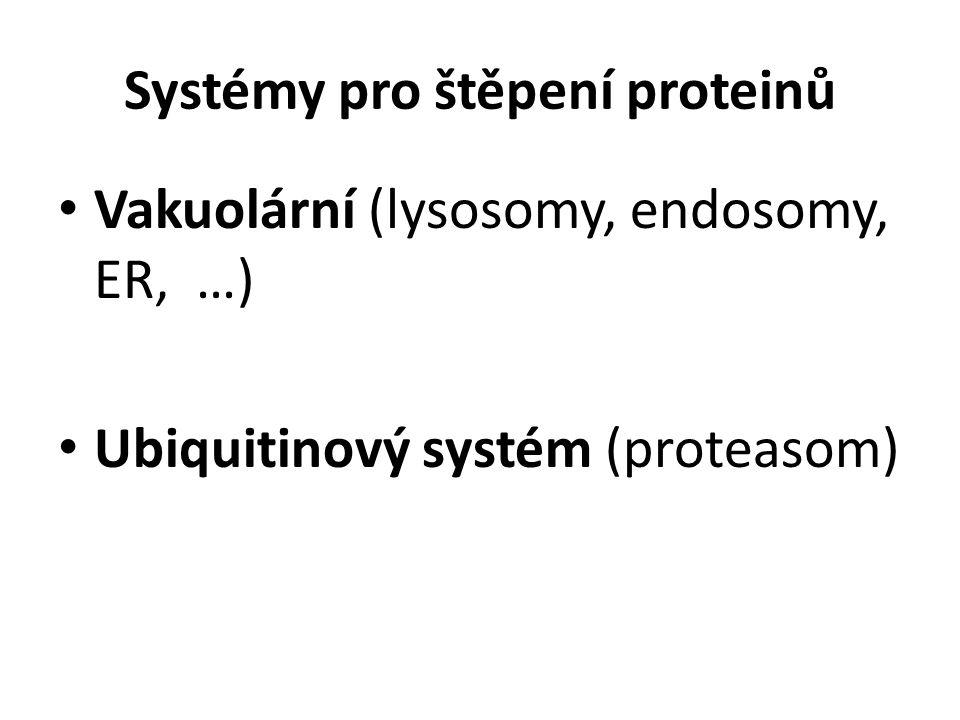 Systémy pro štěpení proteinů