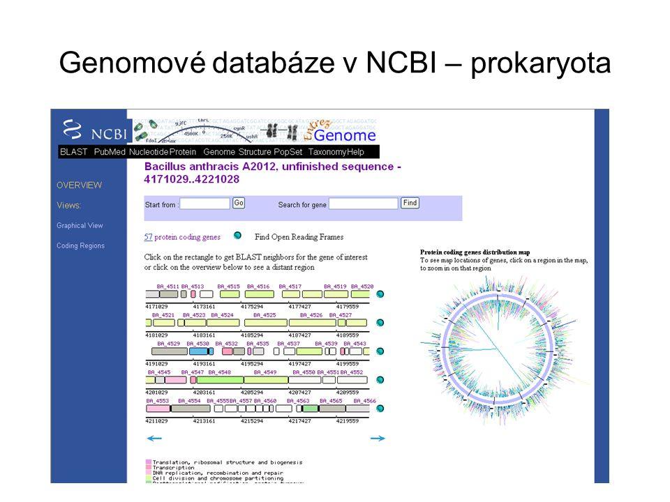 Genomové databáze v NCBI – prokaryota
