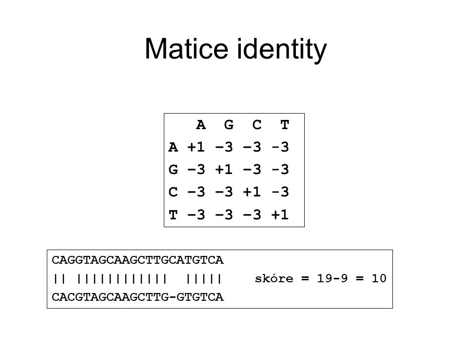 Matice identity A G C T A +1 –3 –3 -3 G –3 +1 –3 -3 C –3 –3 +1 -3