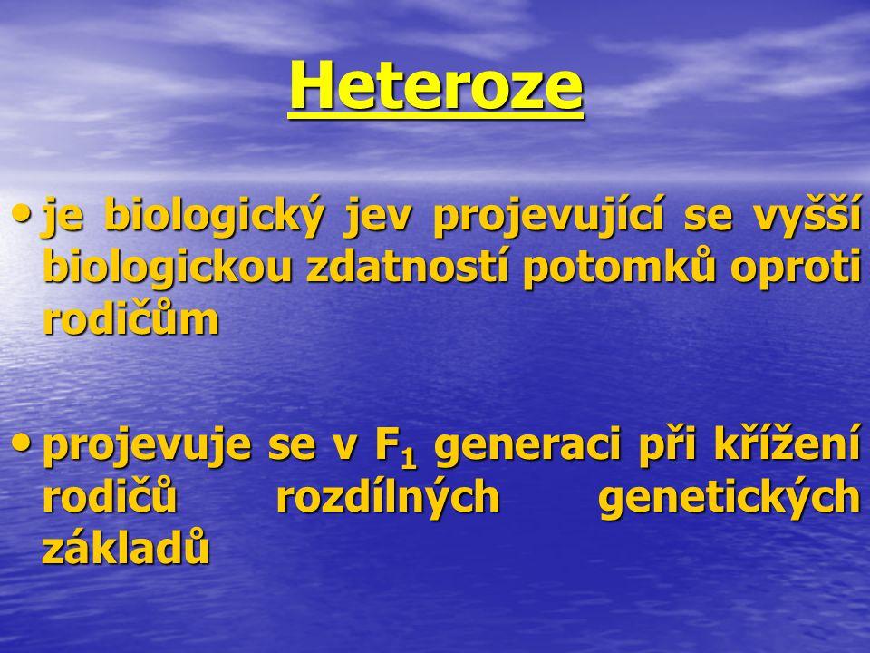 Heteroze je biologický jev projevující se vyšší biologickou zdatností potomků oproti rodičům.