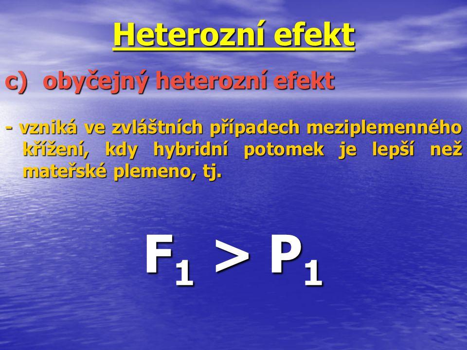 F1 > P1 Heterozní efekt c) obyčejný heterozní efekt