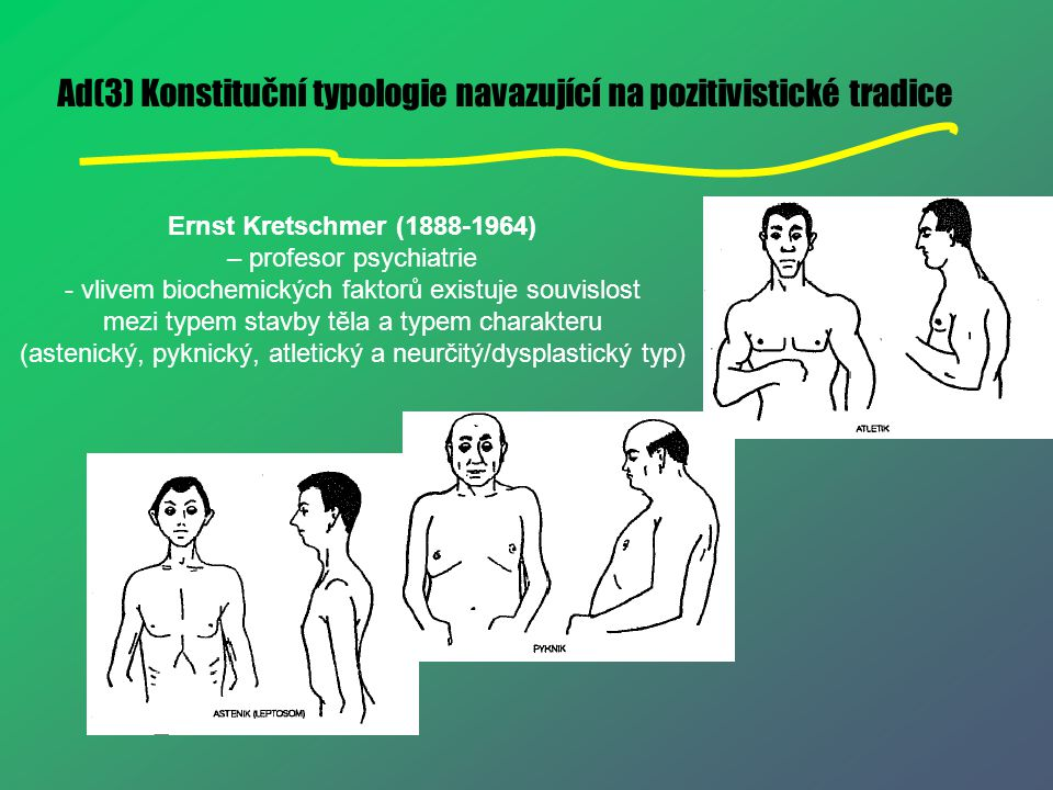 Ad(3) Konstituční typologie navazující na pozitivistické tradice