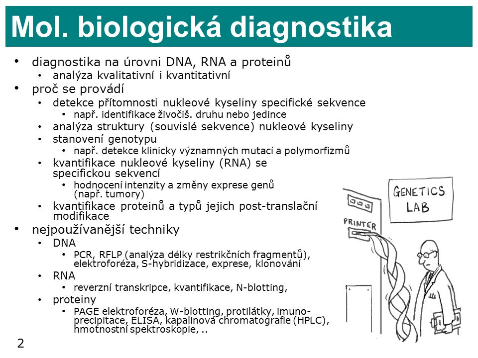 Mol. biologická diagnostika