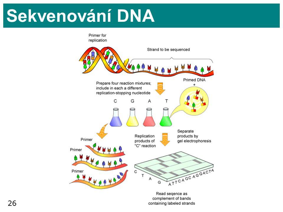 Sekvenování DNA