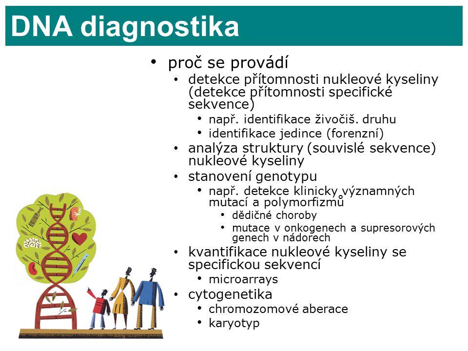 DNA diagnostika proč se provádí