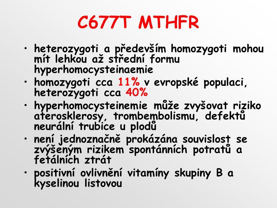 C677T MTHFR heterozygoti a především homozygoti mohou mít lehkou až střední formu hyperhomocysteinaemie.