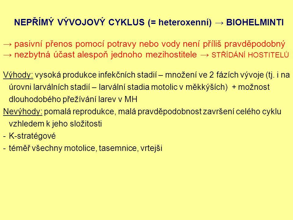 NEPŘÍMÝ VÝVOJOVÝ CYKLUS (= heteroxenní) → BIOHELMINTI