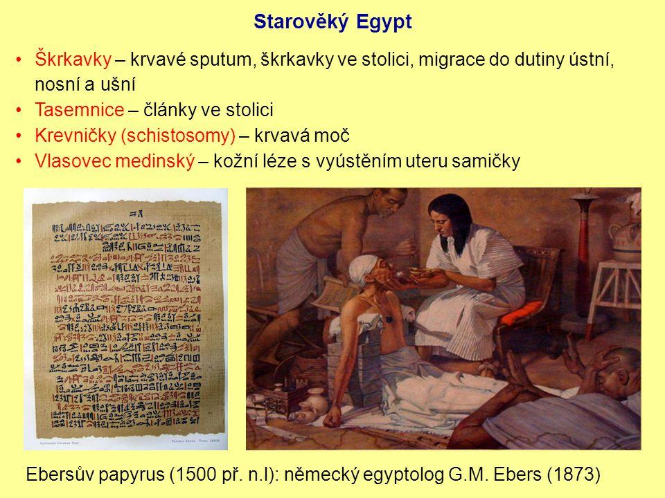 Starověký Egypt Škrkavky – krvavé sputum, škrkavky ve stolici, migrace do dutiny ústní, nosní a ušní.