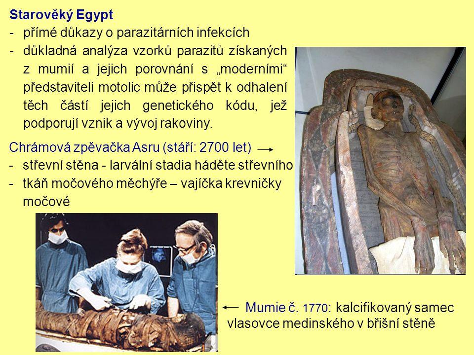 Starověký Egypt přímé důkazy o parazitárních infekcích.