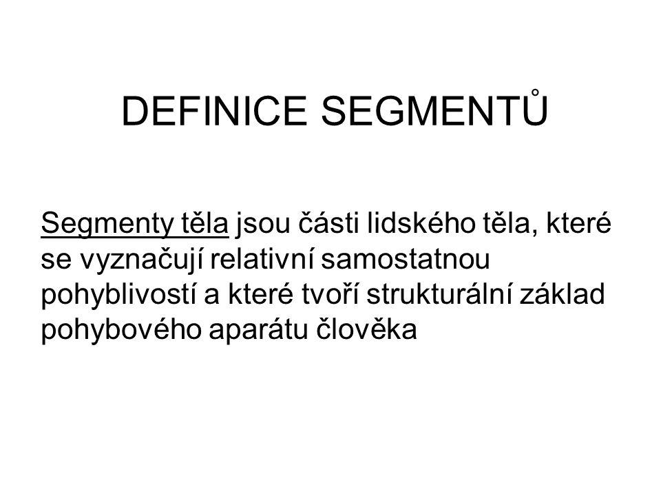 DEFINICE SEGMENTŮ