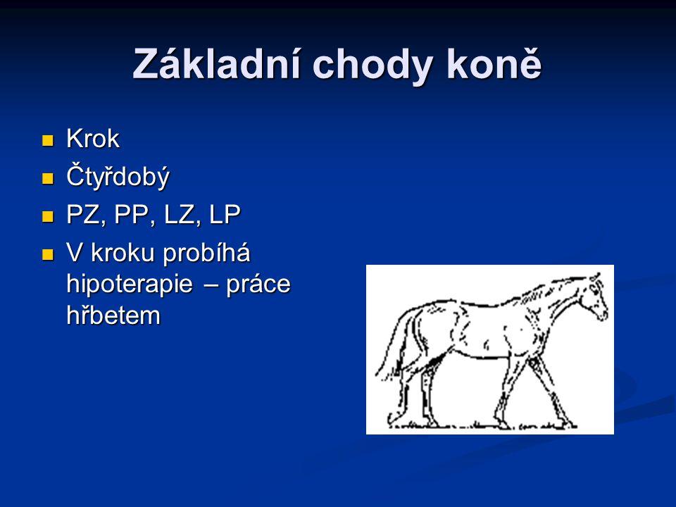 Základní chody koně Krok Čtyřdobý PZ, PP, LZ, LP