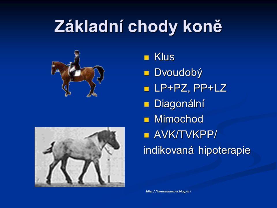 Základní chody koně Klus Dvoudobý LP+PZ, PP+LZ Diagonální Mimochod