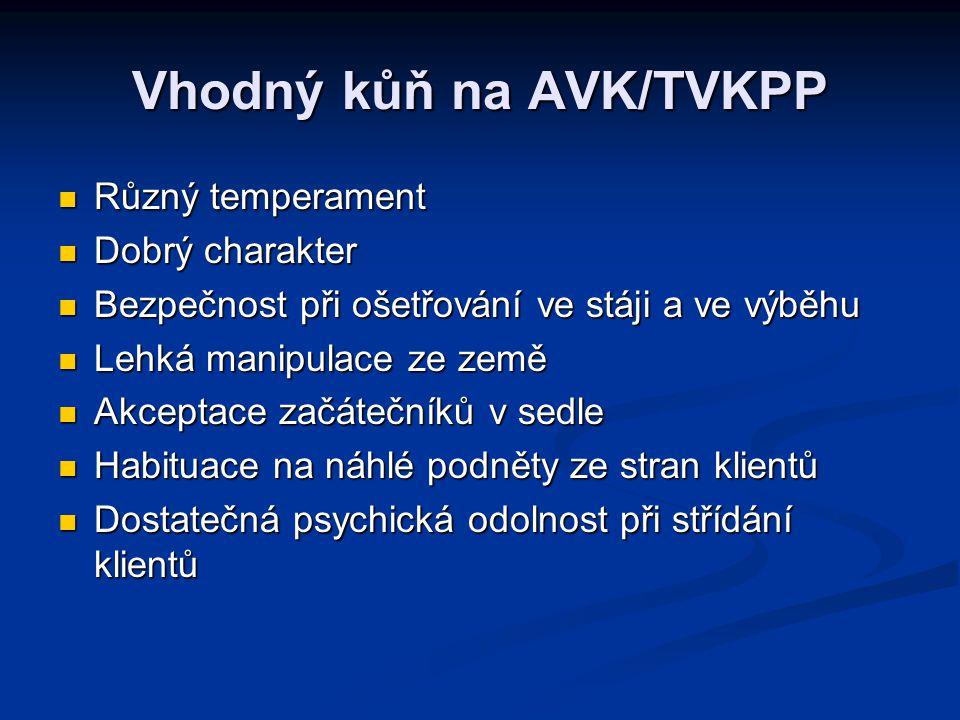Vhodný kůň na AVK/TVKPP