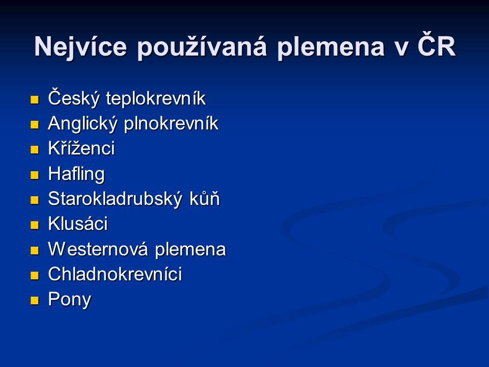 Nejvíce používaná plemena v ČR