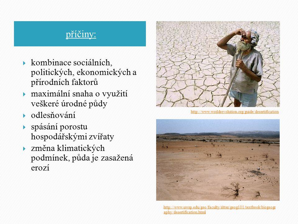 příčiny: kombinace sociálních, politických, ekonomických a přírodních faktorů. maximální snaha o využití veškeré úrodné půdy.