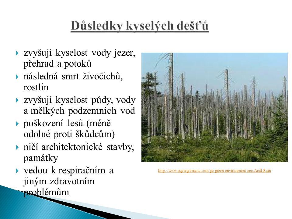 Důsledky kyselých dešťů