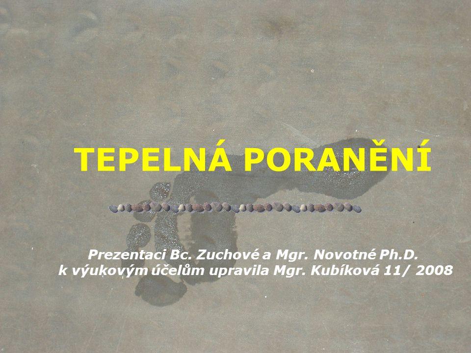 TEPELNÁ PORANĚNÍ Prezentaci Bc. Zuchové a Mgr. Novotné Ph. D