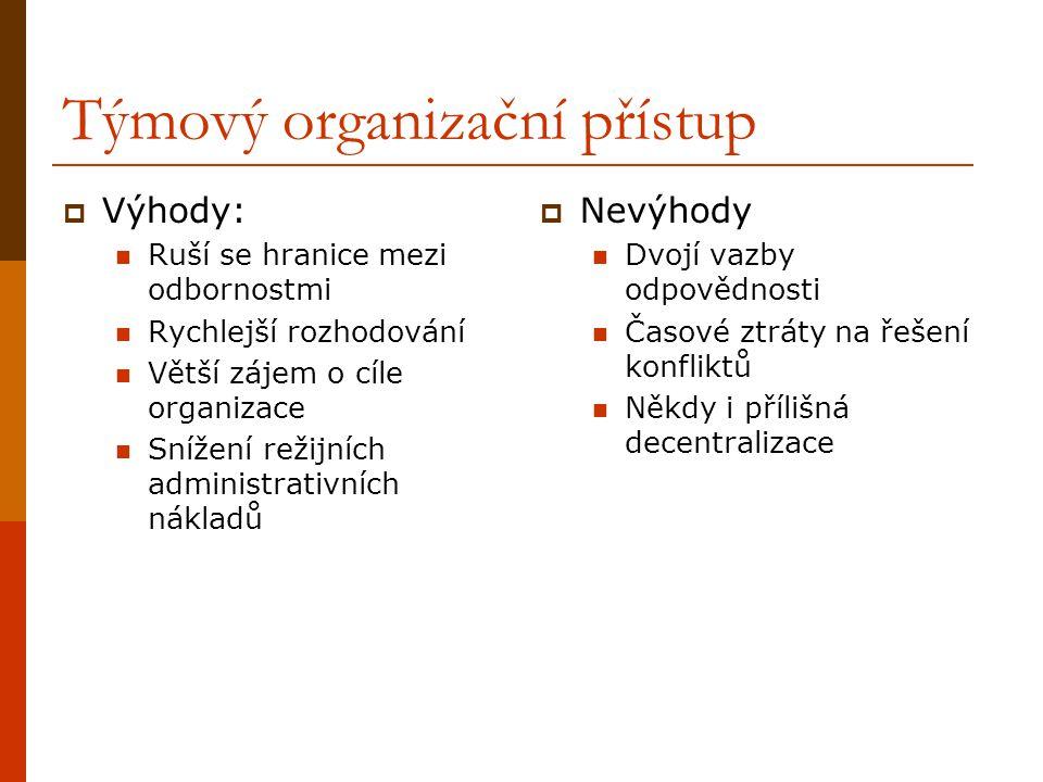 Týmový organizační přístup
