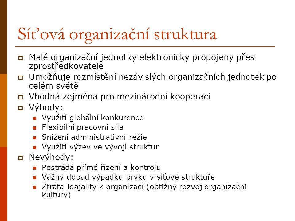 Síťová organizační struktura